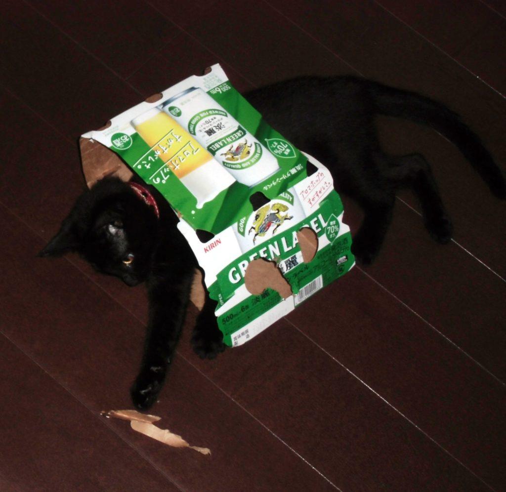 ビールパッケージにお決まりのダイブ